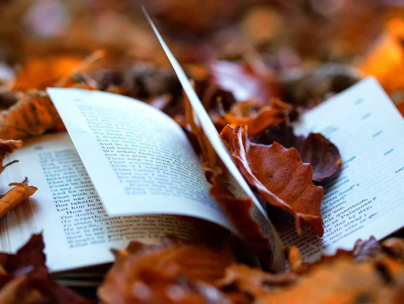 Książka w jesiennych liściach