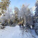 Zima widok - dzieci spacerujące