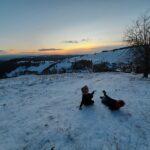 Zima widok - dzieci bawiące się na śniegu