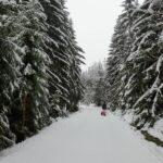 Zima widok - dziecko spacerujące