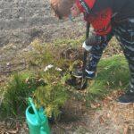 Sadzenie drzewka prze ucznia