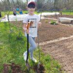 Sadzenie przez uczennice drzewka