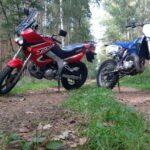 2 motory na leśnej drodze
