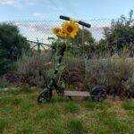 Hulajnoga i kwiaty